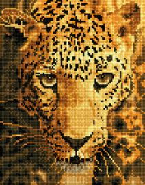 DIAMOND DOTZ JAGUAR PROWL - NEEDLEART WORLD