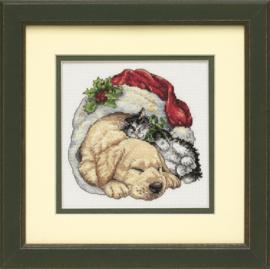 CHRISTMAS MORNING PETS  - Dimensions (USA)