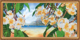 KRALEN BORDUURPAKKET HAWAIIAN BREEZE - ABRIS ART