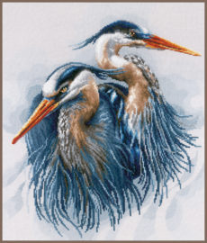 Animals - Grote Blauwe Reigers (aida)