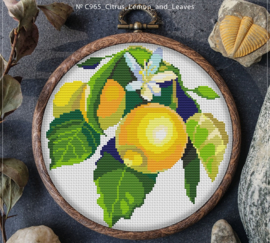 BORDUURPAKKET CITRUS LEMON & LEAVES - C965 VANAF 10,95