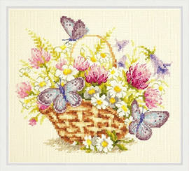 BUTTERFLY: SUMMER SENTIMENT