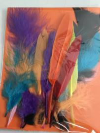 Set gekleurde pluisveren/ knutselveren