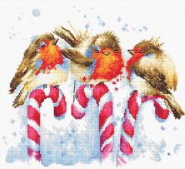 CHRISTMAS BIRDS - LUCA-S