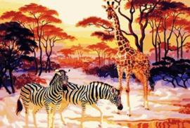 PAINT BY NUMBER GIRAF EN ZEBRAS 50 x 40 cm