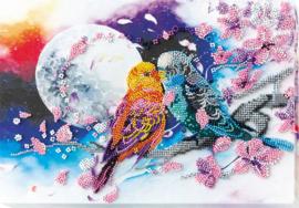 KRALEN BORDUURPAKKET INSEPARABLE - ABRIS ART