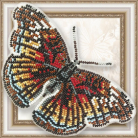 Kralen borduurpakket VLINDER -  EURYPHURA CHALCIS - HOBBY ART