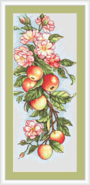 COMPOSITION WITH APPLES - LUCA-S 17 x 38 cm