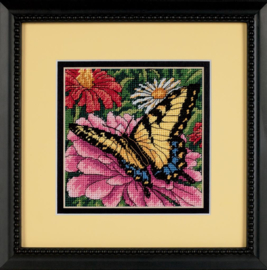 BUTTERFLY ON ZINNIA  - Dimensions (USA)