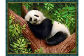 SLEEPY PANDA (30 x 40 cm)