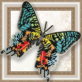 Kralen borduurpakket VLINDER - URANIA MADAGASCAR - HOBBY ART