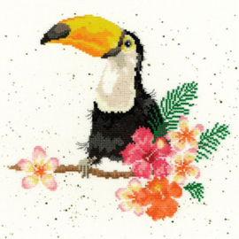 BORDUURPAKKET HANNAH DALE - TOUCAN OF MY AFFECTION - BOTHY THREADS