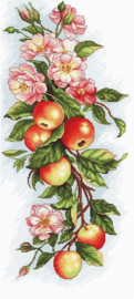 COMPOSITION WITH APPLES (aida)