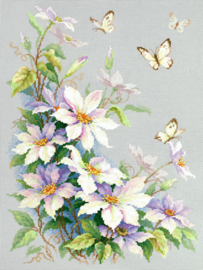 BUTTERFLY: CLEMATIS
