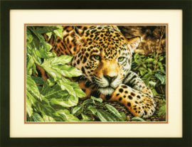 LEOPARD IN REPOSE - Dimensions (GOLD collection)