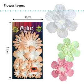 Petaloo • Flower layers Mango - Papieren bloemblaadjes  (12 stuks)