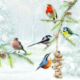 Ambiënte servetten 5st - Winter vogels 33x33cm