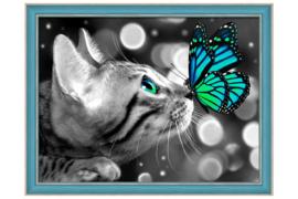 Kat met vlinder (40 x 30 cm)