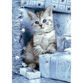 KITTEN AND CHRISTMAS PRESENTS 27 x 38 cm