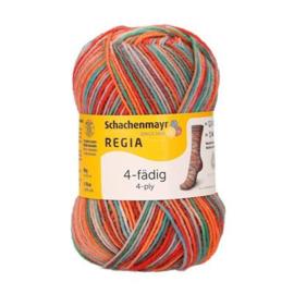 Regia 1103
