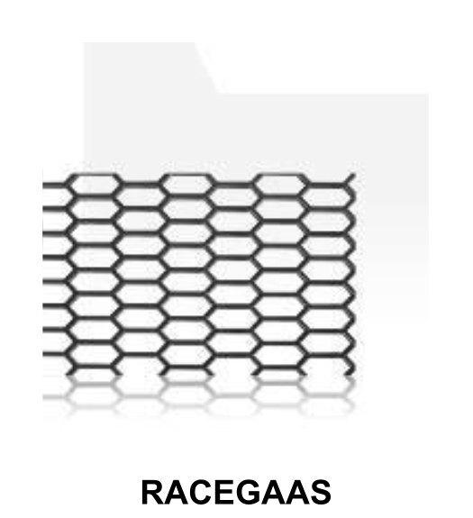 racegaas