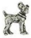 Bedeltje Hond Jack Russell