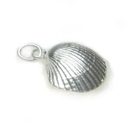 zilveren kokkelhanger