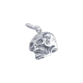 zilveren schedel