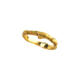 Gouden ring tak