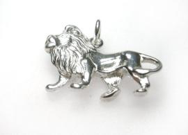 zilveren sterrenbeeld Leeuw