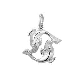 Zilveren hanger sterrenbeeld vissen