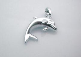 zilveren Dolfijn
