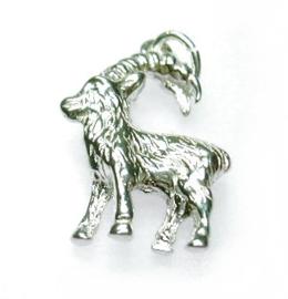 zilveren sterrenbeeld steenbok