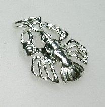 zilveren sterrenbeeld Kreeft
