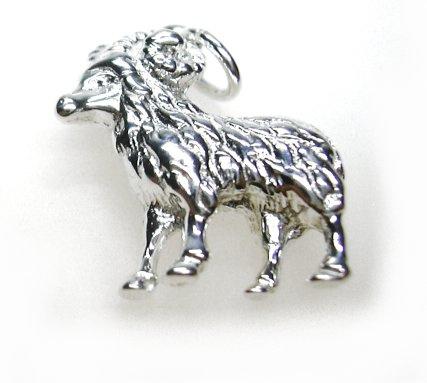 zilveren sterrenbeeld ram