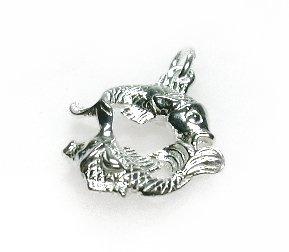 zilveren sterrenbeeld vissen hangertje