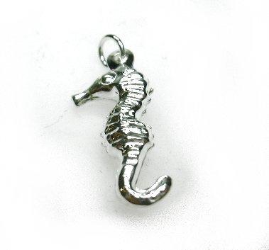 zilveren zeepaard hanger