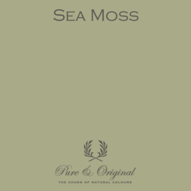 Sea Moss - Pure & Original Carazzo