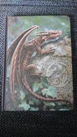 Draken journal