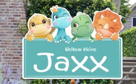 Geboortebord Jaxx - baby dino's blauw bordje