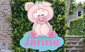Geboortebord Janne  -  varkentje op wolk