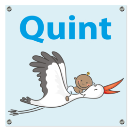 Spandoek Quint