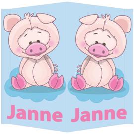 Raambord Janne