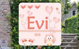 Geboortebord Evi  -  uiltje vogeltjes hartjes scrapbook style!