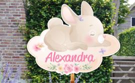 Geboortebord Alexandra  - konijntje haasje wolk vlinder