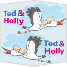 Raambord Ted & Holly
