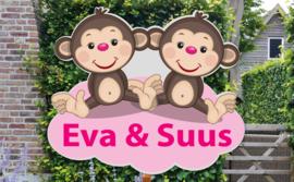 Geboortebord Eva & Suus - tweeling meisjes aapjes
