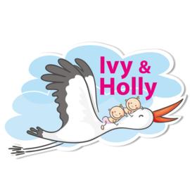 Geboortebord Ivy & Holly - tweeling meisjes ooievaar