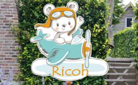 Geboortebord Ricoh  -  beertje piloot vliegtuigje