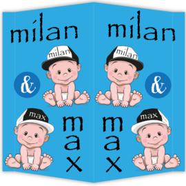 Raambord Max & Milan